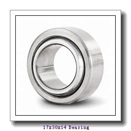 17 mm x 30 mm x 14 mm  Loyal GE 017 ECR-2RS plain bearings