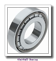 AST 6313-2RS deep groove ball bearings