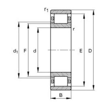 50 mm x 90 mm x 20 mm  FAG N210-E-TVP2 cylindrical roller bearings