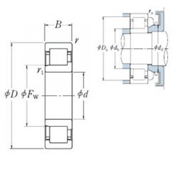 50 mm x 80 mm x 16 mm  NSK NJ1010 cylindrical roller bearings