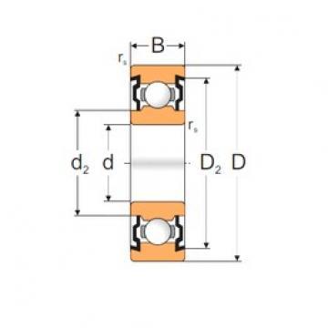 17 mm x 40 mm x 12 mm  Loyal 6203-2ZP deep groove ball bearings