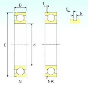50 mm x 80 mm x 16 mm  ISB 6010 NR deep groove ball bearings