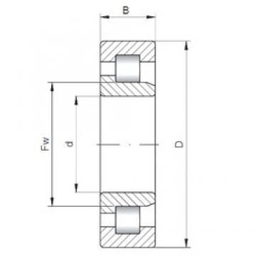 110 mm x 240 mm x 50 mm  Loyal NJ322 E cylindrical roller bearings