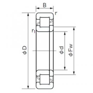 50 mm x 80 mm x 16 mm  NACHI NUP 1010 cylindrical roller bearings