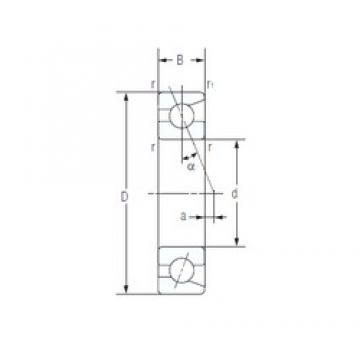 17 mm x 40 mm x 12 mm  NACHI 7203C angular contact ball bearings