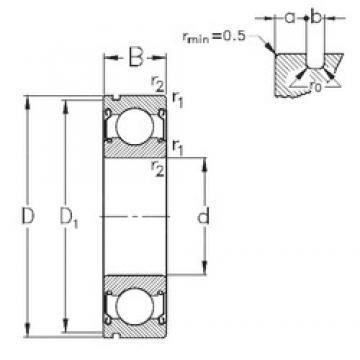 17 mm x 40 mm x 12 mm  NKE 6203-2Z-N deep groove ball bearings