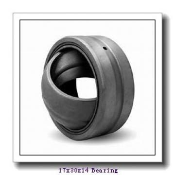 17 mm x 30 mm x 14 mm  LS GE17N plain bearings